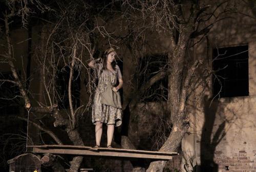 Το πανηγύρι, 2010 (03)